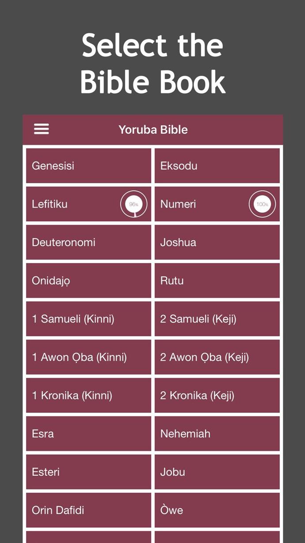 Yoruba Audio Bible - iPhone App Version - DaBible