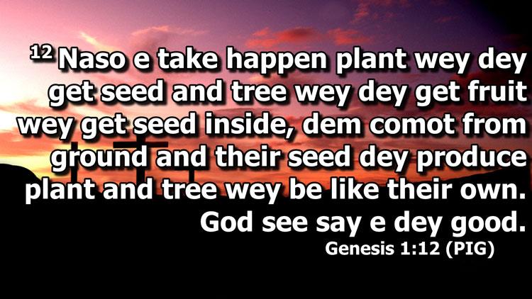 Nigerian Pidgin Bible now on EasyWorship
